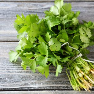 bunch of fresh cilantro on the boards, fresh herbs; Shutterstock ID 230800417