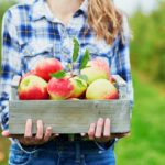 8 Insider Tips for Apple Picking Season