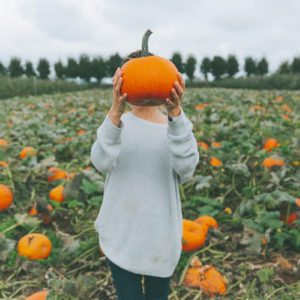 6 Tips for How to Pick a Pumpkin That's Perfect for Your Jack O' Lantern