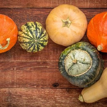 A variety of winter squash fruits on a rustic wooden table