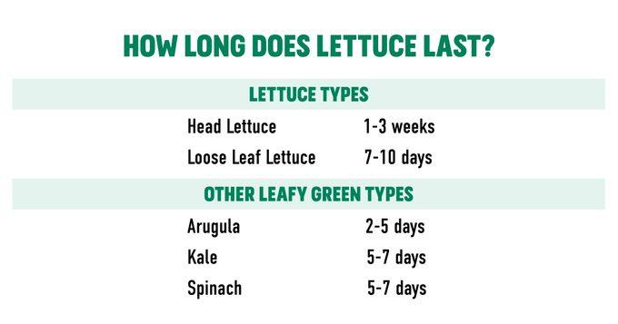 Lettuce-chart-social-1200x630