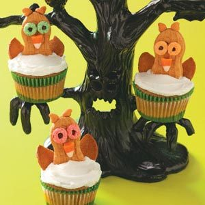 wide eyed owl cupcakes
