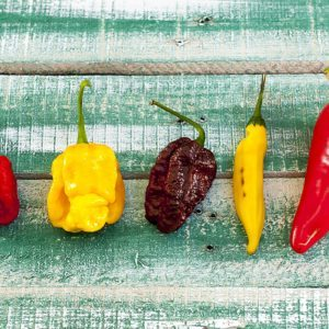 We Bet You Can't Handle the World's Hottest Pepper