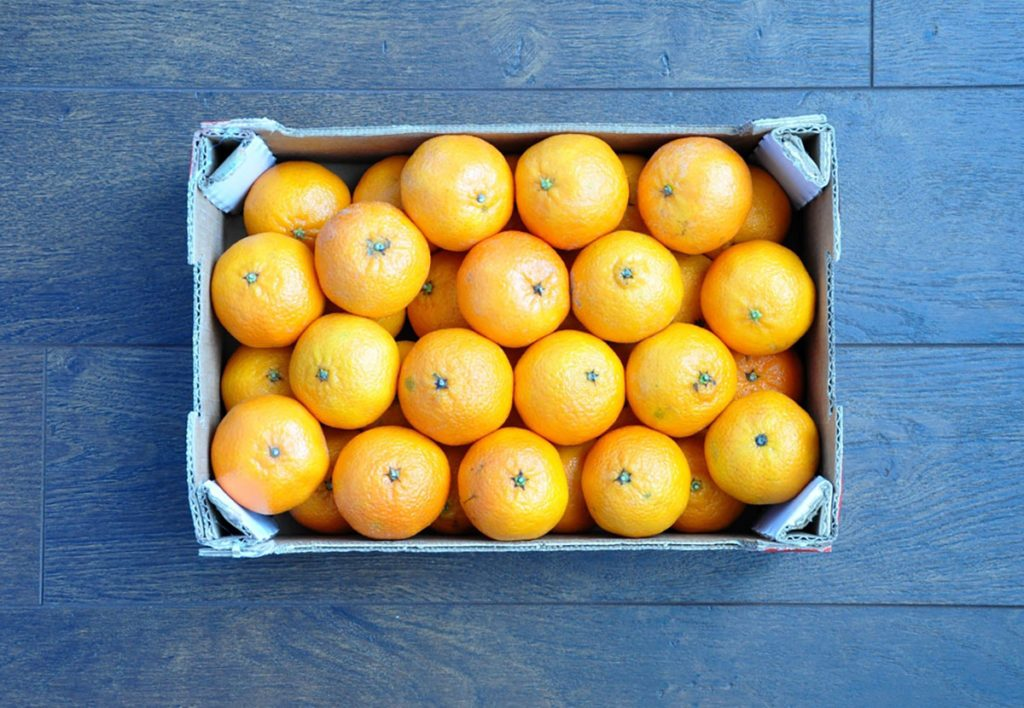 4 Surprising Reasons You Might Find An Orange In A Christmas