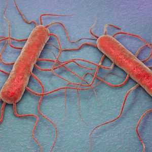 Here's How You Should Be Protecting Your Family Against Listeria