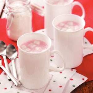 Holiday Hot Drink Mix