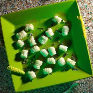 Slugs in Butter