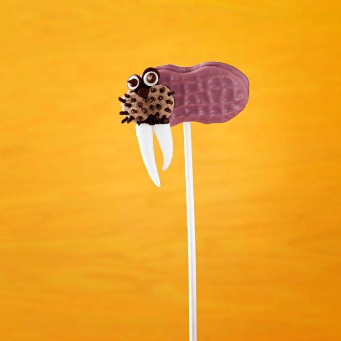 Walrus Cookie Pops