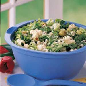 Tossed Salad with Spinach Dressing