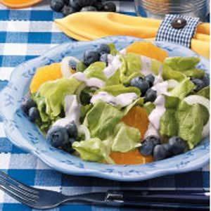 Blueberry-Orange Onion Salad