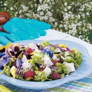 Pansy 'n' Chicken Tossed Salad
