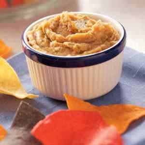 Salsa Bean Dip