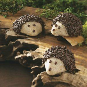 Chocolate-Pecan Hedgehog Cookies