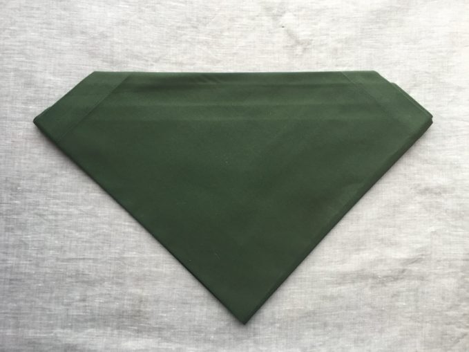 Green napkin now flipped to have its folded side down