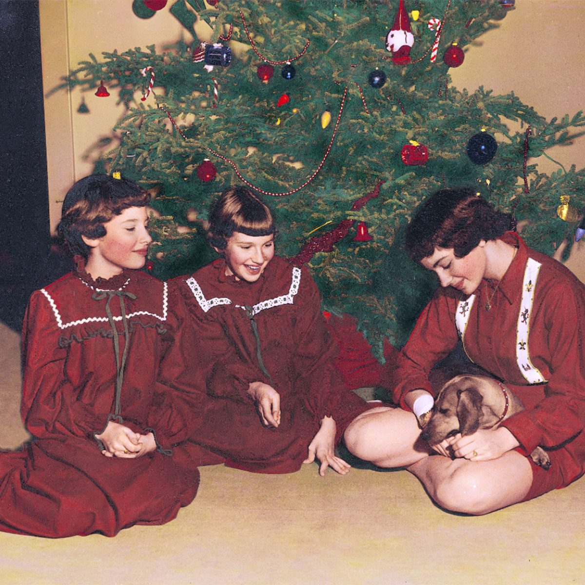 Three girls with a new puppy