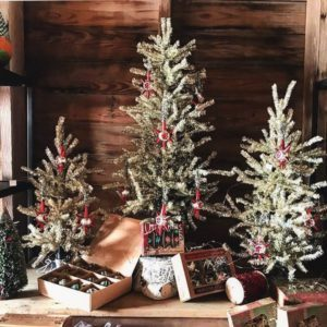 Three small Christmas trees on display by a window