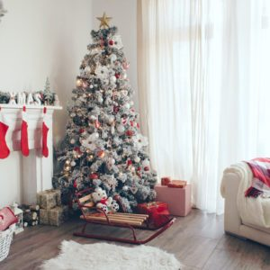 8 Tips for Keeping a Christmas Tree Fresh, Merry and Bright