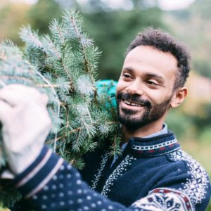 A young man dressed in Christmas, brings home a freshly cut fir tree to be decorated for Christmas.