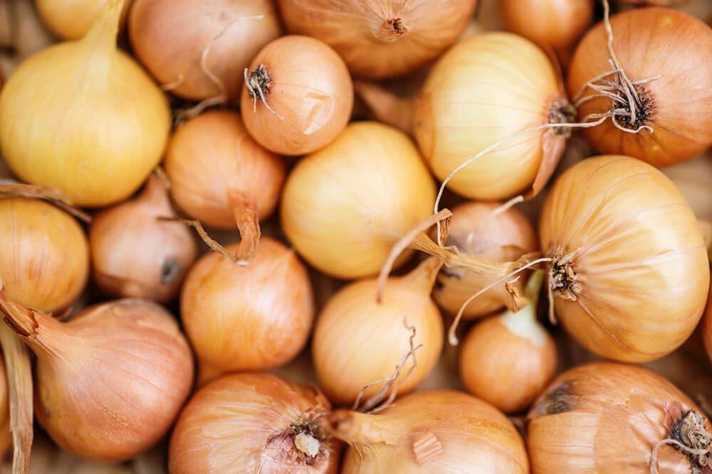 Ripe onions. Onions in market