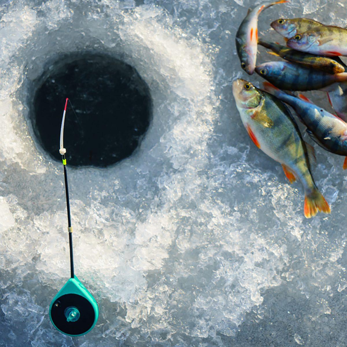 Ice fishing. Winter fishing