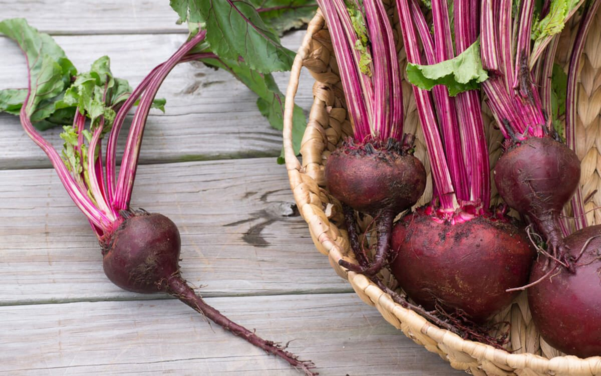 Cook Beets and Why You'll Want to Eat Them | Taste of Home