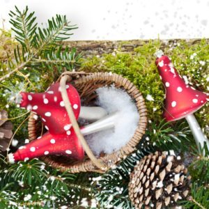 Beyond Christmas Pickles: How Mushrooms Came to Symbolize Good Luck at the Holidays