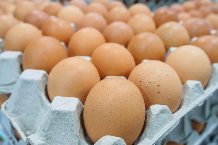 Huge carton of eggs