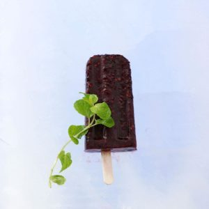 Blackberry Mint Pops