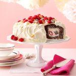 Chocolate Raspberry Tunnel Cake