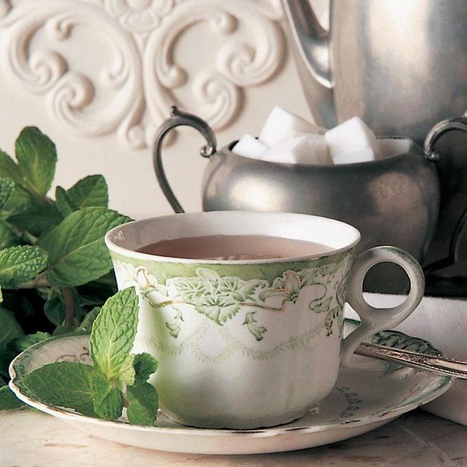 Spiced Mint Tea Exps40863 Th1423c41 Rms 4