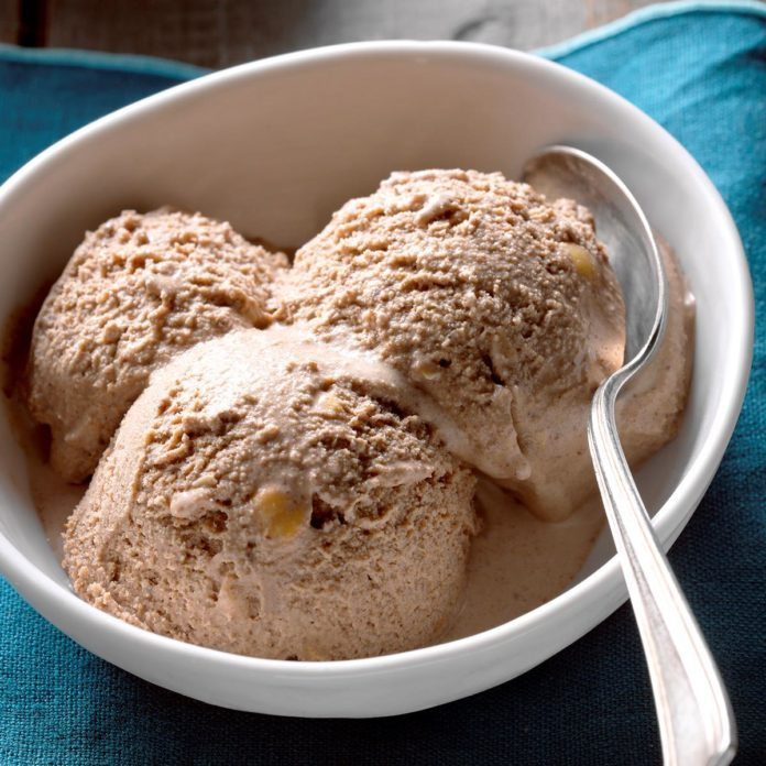 Toasted Hazelnut and Chocolate Ice Cream