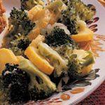 Broccoli Squash Bake