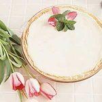 Rhubarb Cream Delight Dessert