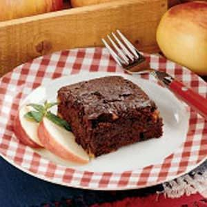 Apple Cocoa Snack Cake