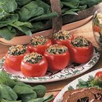 Spinach-Stuffed Tomatoes
