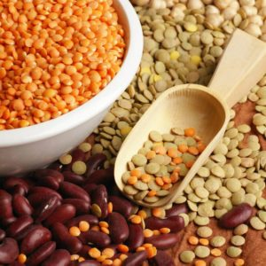 Various pulses - chickpea, lentil and beans