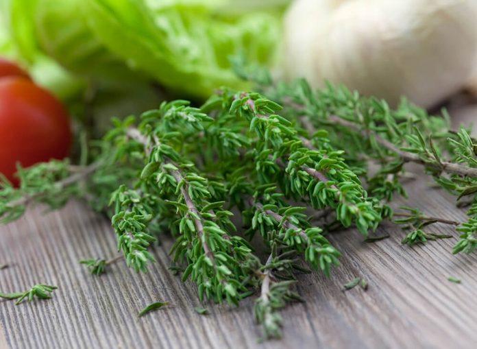 fresh green thyme on board