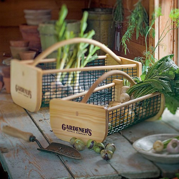 11 Green Thumb Gifts for Gardeners