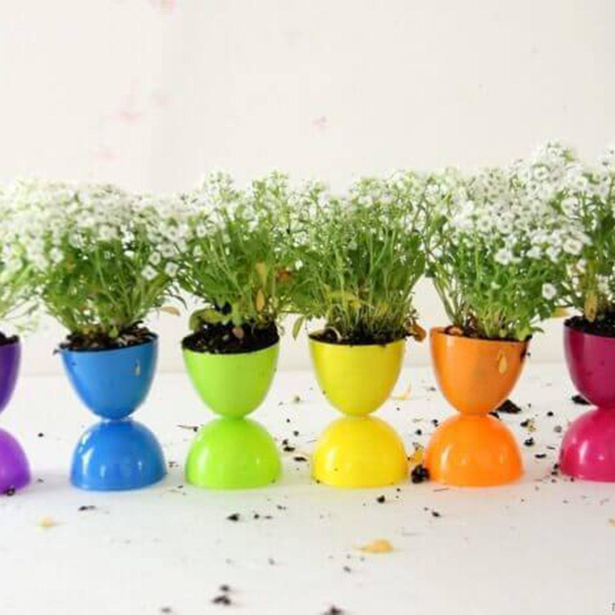 Mini Garden Display