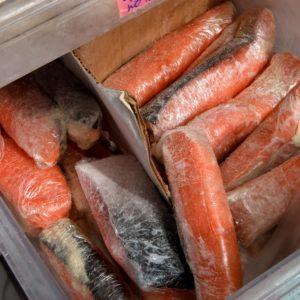 Frozen salmon steaks