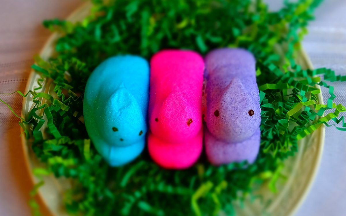 Easter peeps Marshmallow candy/green grass/ white background.