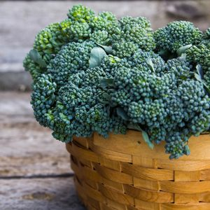 Broccoli in the basket