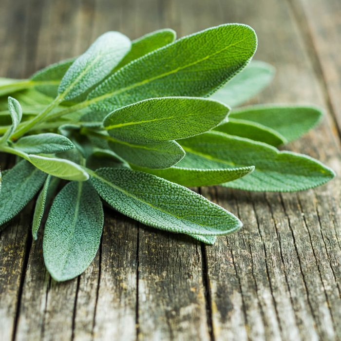Sage leaves on old wooden table.