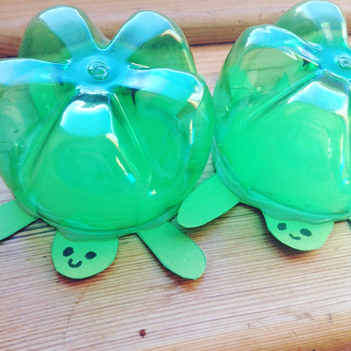 Soda bottle turtles