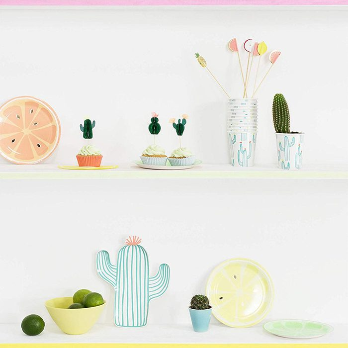 cactus decor for cinco de mayo