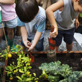 5 Farm Camps for Kids Who Love the Outdoors