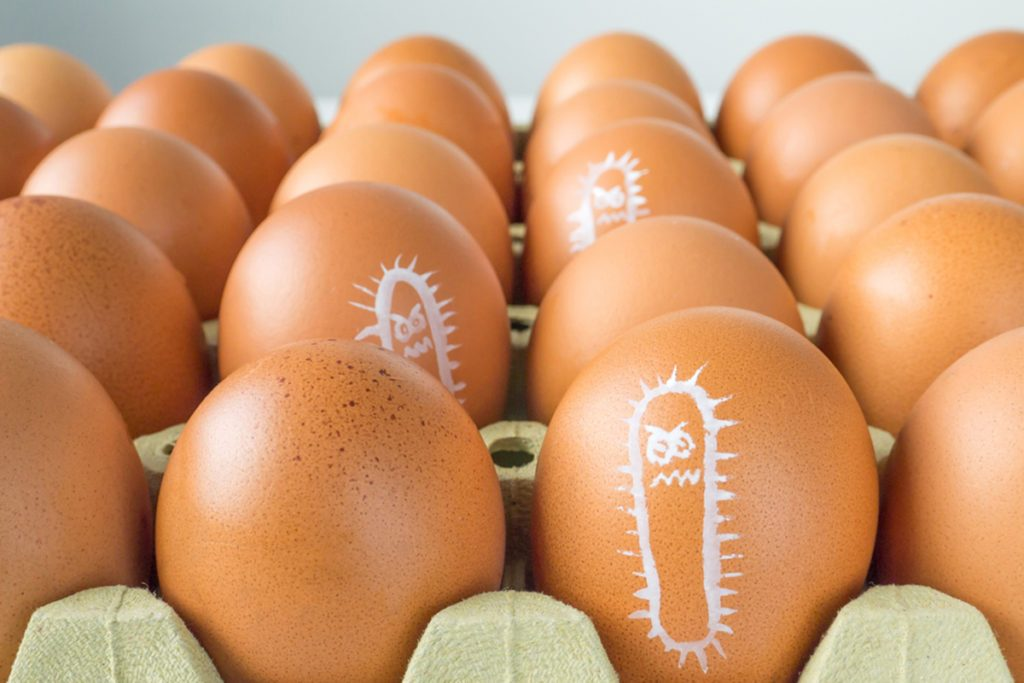 Salmonella bacterium drawn on the chicken eggs