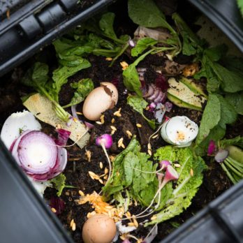 I Started Composting at Home—Here's What Happened