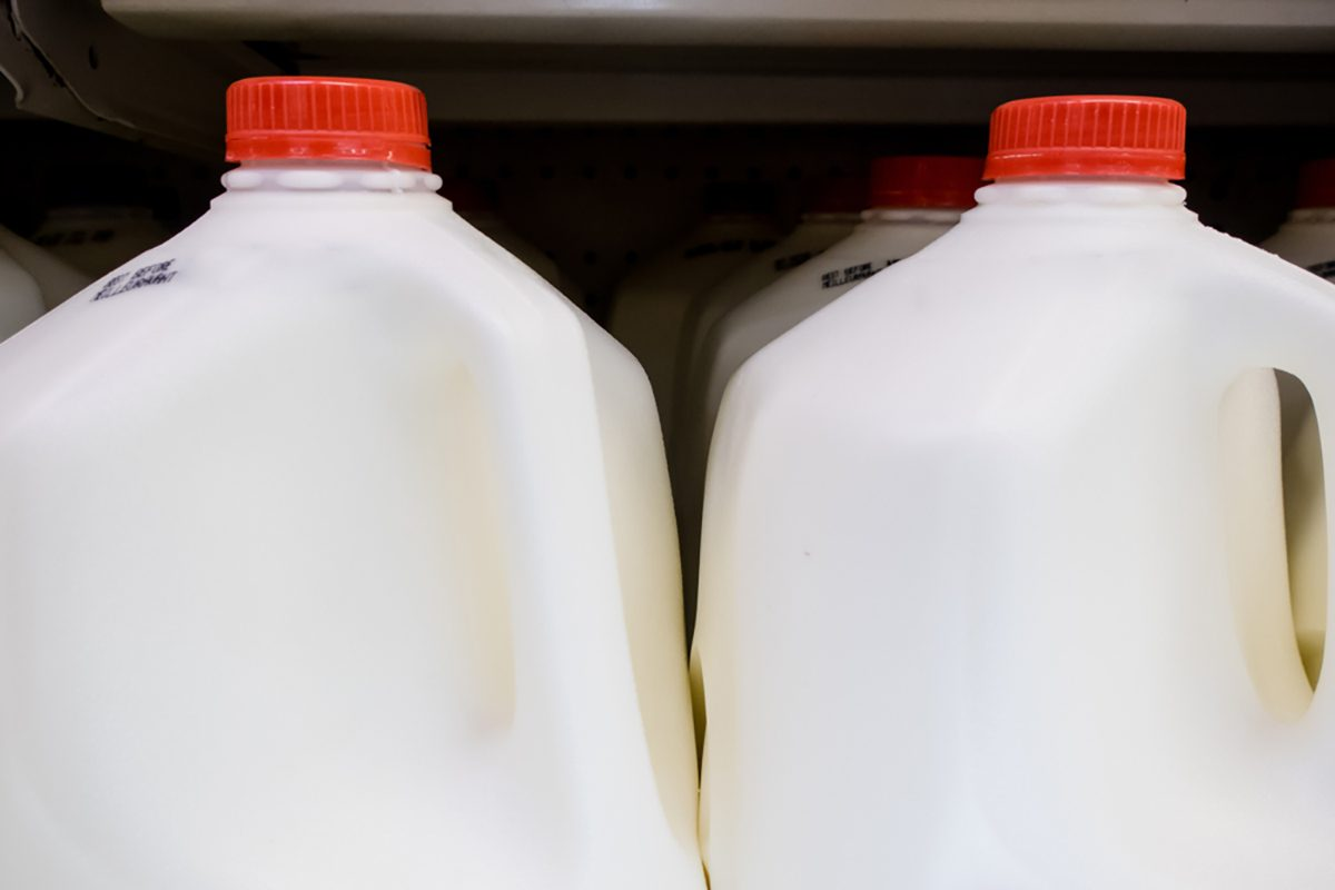 gallon milk jugs at the grocery store