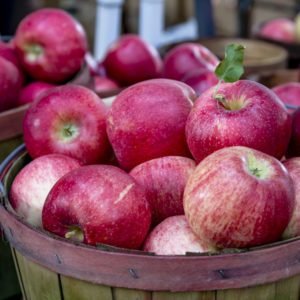 Fresh picked red apples in bushel baskets on display at local farmers market